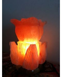 Fancy Double Flower Shaped Himalayan Salt Lamp Rock Crystal Unique Ionizer